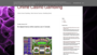 Amazon casino fairbiz.biz fairbiz.biz game movie online store