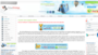 Custom term papers online