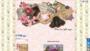 Romance Angels Deck By Doreen Virtue