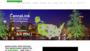 Online Marijuana Web Designs
