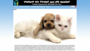 Toronto Pet Sitters And Dog Walkers
