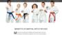 Adult Martial Arts Classes Cranford NJ