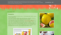 Arbuzowy melon: Smoothie