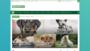 Blog animali domestici: cani, gatti, conigli e notizie animali