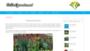 Jaka pergola ogrodowa będzie odpowiednia? Którą wybrać: drewnianą czy metalową? RANKING 2018 na Codoogrodu.net
